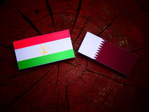 Tajikistan flag with Qatari flag on a tree stump isolated Stock Image