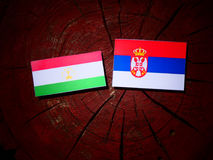 Tajikistan flag with Serbian flag on a tree stump isolated. Tajikistan flag with Serbian flag on a tree stump royalty free stock photos