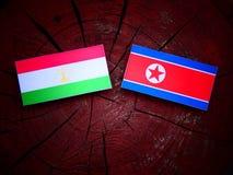 Tajikistan flaga z koreańczyk z korei północnej flaga na drzewnym fiszorku Fotografia Royalty Free