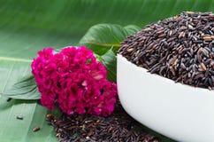 Tajlandia brown ryż na białym pucharze z menchiami kwitną i banan le Zdjęcie Stock