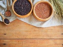 Tajlandia jaśminowi brown ryż Fotografia Stock