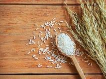 Tajlandia jaśminu ryż Zdjęcie Royalty Free