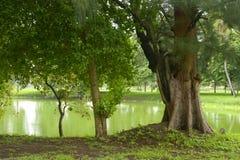 Tajlandia krajobraz Zdjęcia Royalty Free