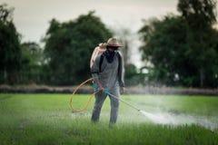 Tajlandia rolnicy Fotografia Royalty Free