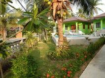 Tajlandia, Samui Grudzień 13, 2013 Kokosowi drzewka palmowe na tle zieleni bungalowy 100 metres od chiny południowi morza Fotografia Stock