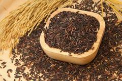 Tajlandzcy czarni jaśminowi ryż (Ryżowa jagoda) Zdjęcie Stock