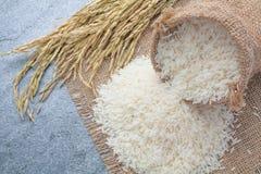 Tajlandzcy fragrant jaśminowi ryż w łyżce z złocistym kolcem Obrazy Royalty Free