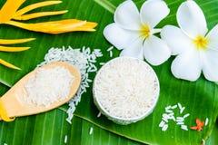Tajlandzcy jaśminowi ryż i drewniana łyżka Zdjęcie Stock