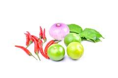 tajlandzcy karmowi składniki Zdjęcie Stock