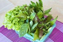 Tajlandzcy mieszani warzywa Zdjęcie Stock