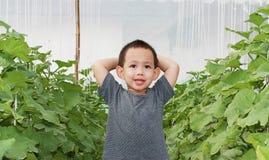 Tajlandzka chłopiec ono uśmiecha się przy melonowym gospodarstwem rolnym Zdjęcia Royalty Free