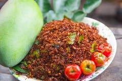 Tajlandzka Chili sól Fotografia Stock