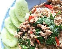 Tajlandzka korzenna karmowa basil wieprzowina smażąca z ryż i smażącym jajkiem, ochraniacza Kr Zdjęcia Stock