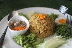 Tajlandzka Południowa Korzenna Ryżowa sałatka z warzywami Fotografia Stock