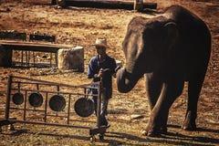 Tajlandzka słoń sztuka instrument muzyczny Fotografia Stock