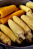 Tajlandzka Uliczna kukurudza Obraz Stock