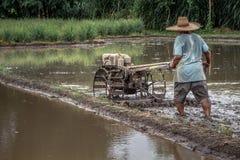 Tajlandzki średniorolny jeżdżenia tiller ciągnik orać irlandczyka pole przed ryżową kulturą, Chiang Mai, Tajlandia zdjęcie royalty free