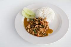 Tajlandzki basilu kurczak Fotografia Stock