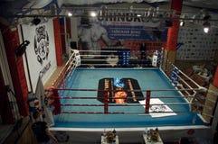 Tajlandzki boksu walki klub Osminog Obraz Royalty Free