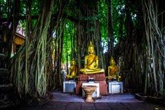 Tajlandzki Buddhas 8 Zdjęcia Royalty Free
