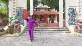 Tajlandzki chi zdjęcie wideo