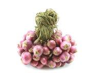 Tajlandzki czerwonej cebuli składnik tajlandzki jedzenie Obraz Stock