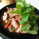 Tajlandzki Esan ` s jedzenie obraz stock