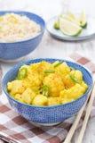 Tajlandzki jarzynowy curry z wapnem, chili i mennicą, Zdjęcie Stock