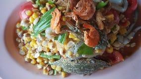 Tajlandzki korzenny somtum tajlandzki dla azjatykciej kuchni Obraz Royalty Free