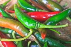 Tajlandzki kuchenny karmowy pikantności ziele pieprz dla gotować Obrazy Stock