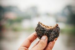 Tajlandzki mochi deser faszerował z koksem palmowy cukier i czarny s - Zdjęcie Stock