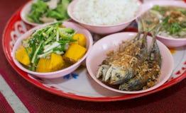 Tajlandzki naczynie kurs jedzący z ryż obraz royalty free