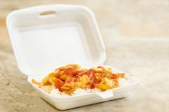 Tajlandzki stylowy omlet z ryż Zdjęcia Royalty Free