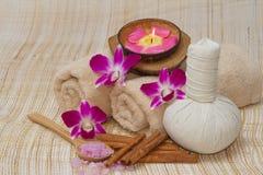Tajlandzki zdrój i masaż, zdrowy i piękny Zdjęcia Royalty Free