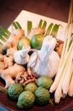 Tajlandzki zdroju traktowania składnik z ziele i ziołowym kompresu bal fotografia royalty free
