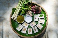 Tajlandzki ziele składnik dla tajlandzkiego karmowego kucharstwa Obrazy Stock