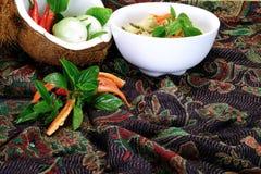 Tajlandzki Zielony curry z kurczaka naczyniem Obrazy Royalty Free