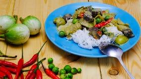 Tajlandzki Zielony curry z kurczaka naczyniem Zdjęcie Royalty Free
