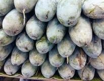 Tajlandzki Zielony mango Zdjęcie Stock