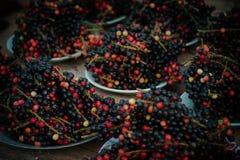 Tajlandzkie jagody, Mamao Luang fotografia stock