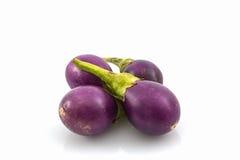 Tajlandzkie purpurowe oberżyny lub purpurowy mały brinjal obrazy royalty free