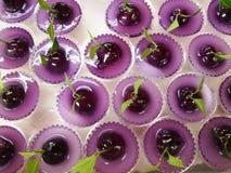 Tajlandzkie Słodkie Bobowe słodycze matrycuje w Purpurowym Kokosowym Słodkim puddingu Galaretowacieją Fotografia Stock