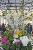 Tajnego ogródu tematu kwiatu dekoracja podczas sławnego Macy s kwiatu Rocznego przedstawienia Zdjęcia Stock