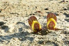 Tajni agenci na plaży w lato publicznym występie Zdjęcie Stock