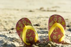 Tajni agenci na plaży w lato publicznym występie Zdjęcie Royalty Free