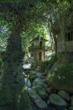 Tajny Buddha ogród w Samui - wioska Obraz Stock