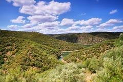 Tajo river near The village of Herrera de Alcántara Royalty Free Stock Photo