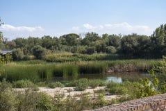 Tajo River Royalty Free Stock Photos