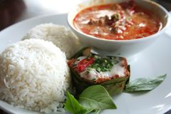 tajski curry Obraz Royalty Free