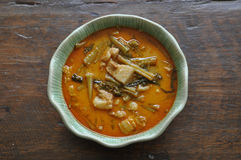 tajski curry Zdjęcia Royalty Free